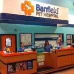 Banfield Pet Hospital Client Experience Survey