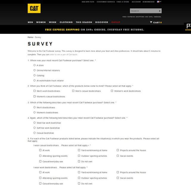 Cat Footwear Experience Survey