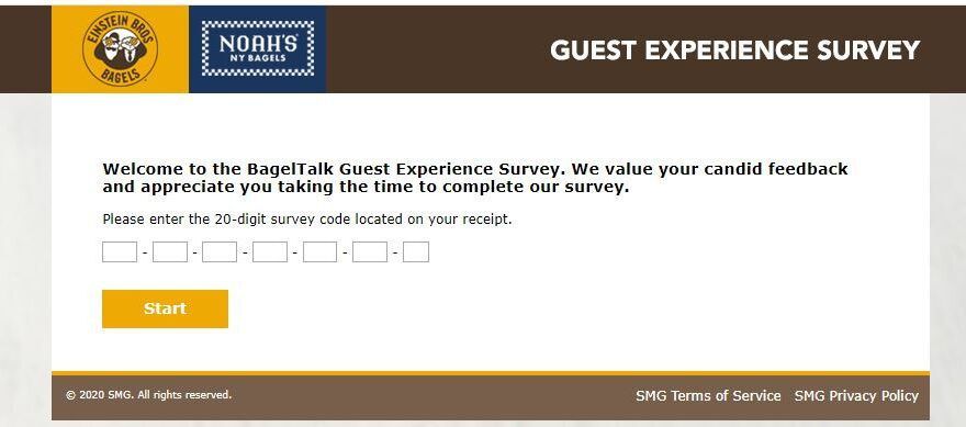 Bagels Survey