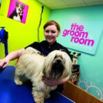 Pets At Home Survey @ www.tellusyourtail.com – Win £500 Pets at Home Gift Vouchers