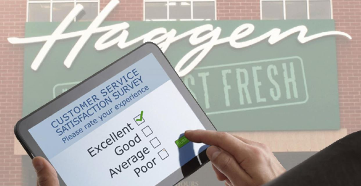 Haggen Survey