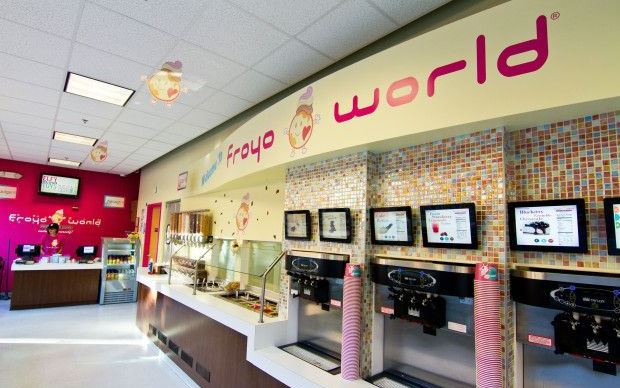 FroyoWorld Survey
