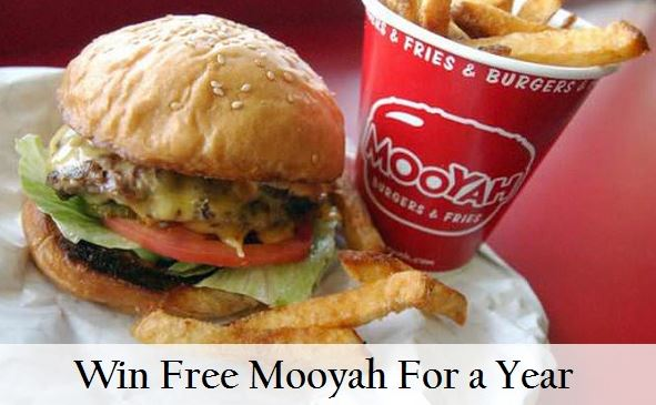 Mooyah Survey