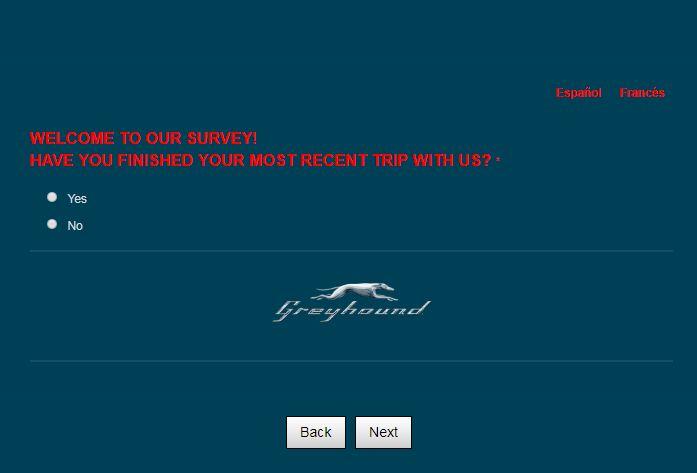 Greyhound Survey