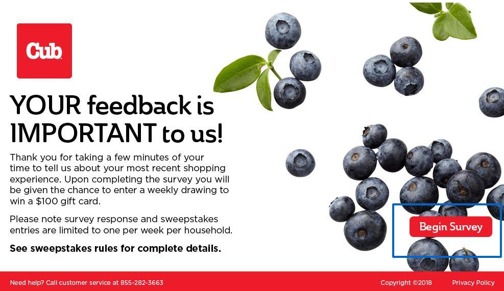 cub foods survey