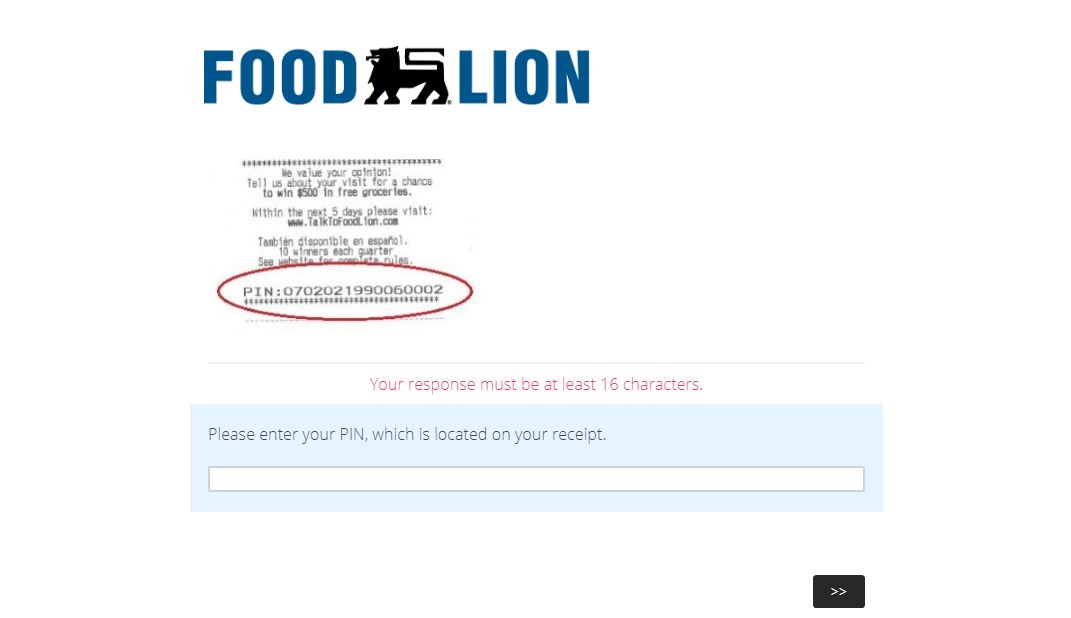Food Lion Survey