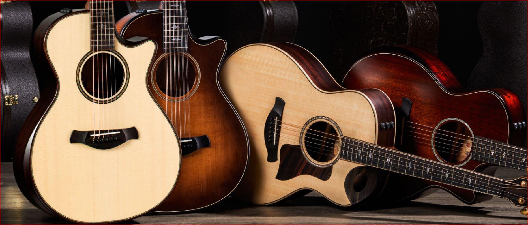 Martin Guitar Customer Opinion Survey