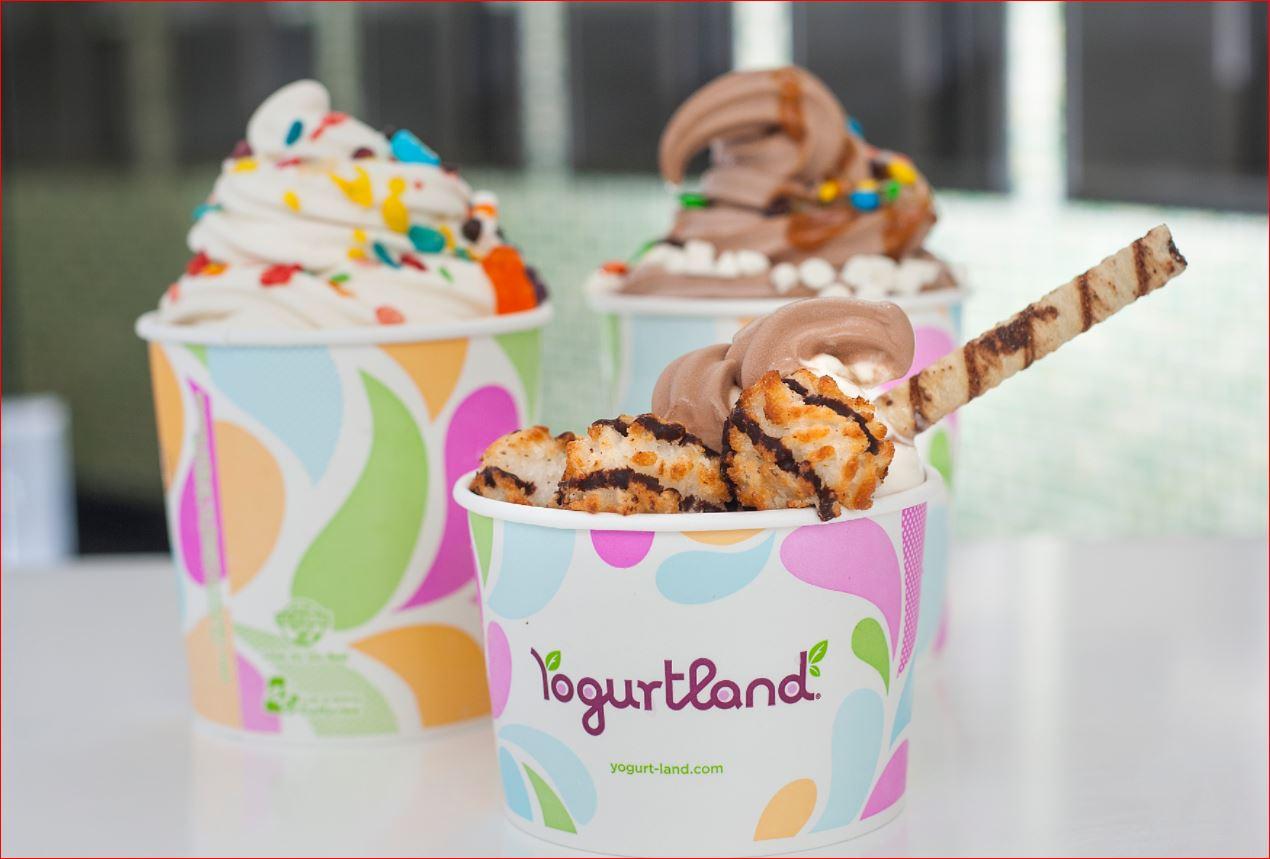 Yogurtland Opinion Survey
